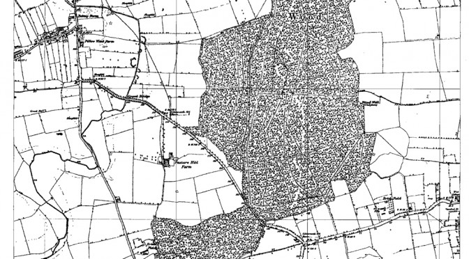 old map bourne wood