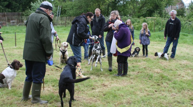 Dog Show at the Community Orchard Open Day