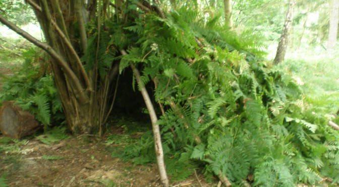 den built in bourne wood