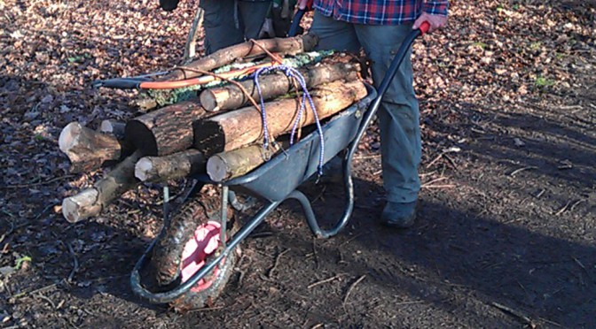 wheelbarrow full of wood