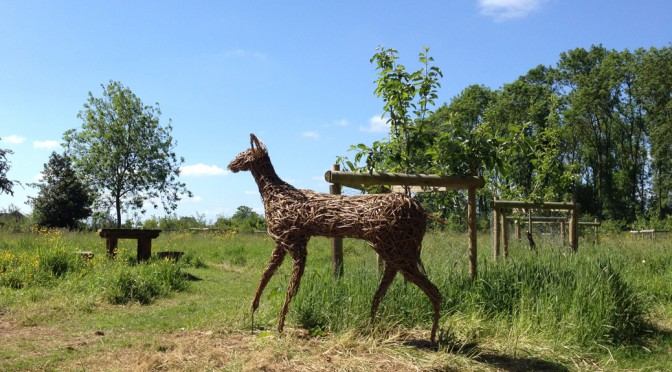 weaving willow deer sculpture