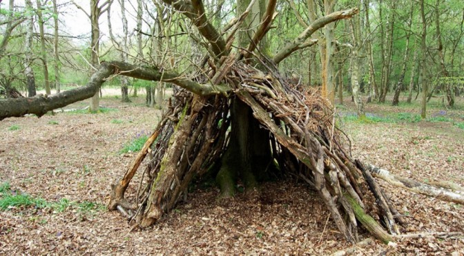 Annual Den Building Competition