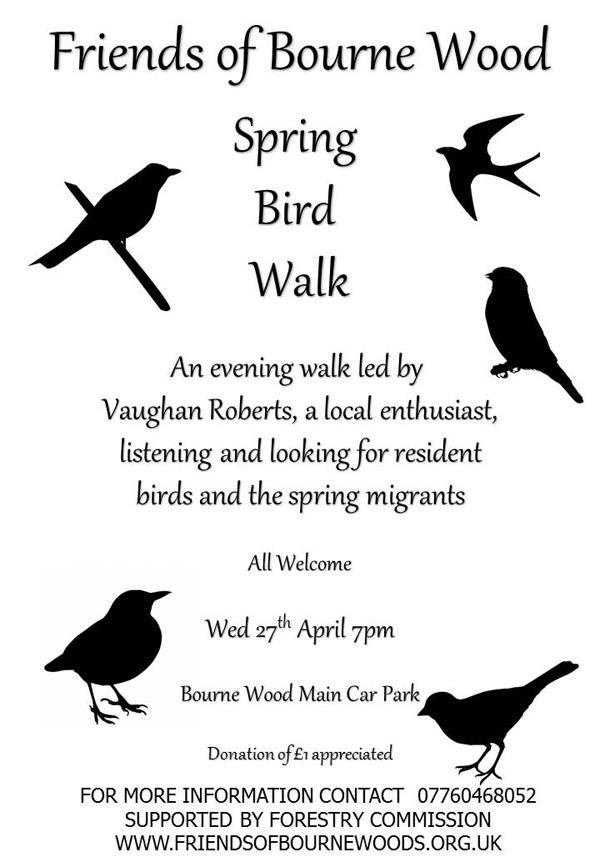 spring bird walk poster