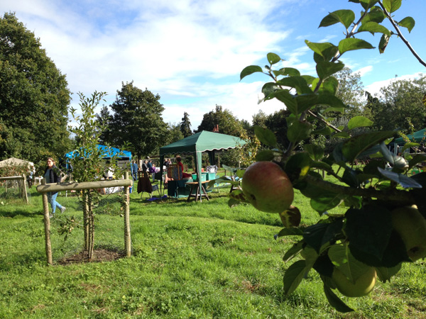 orchard open day