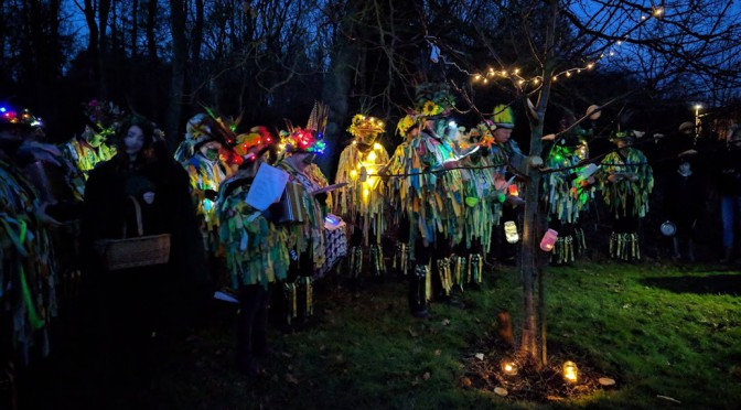 wassail gathering around tree