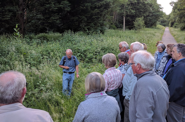 group looking at grasses in bourne wood
