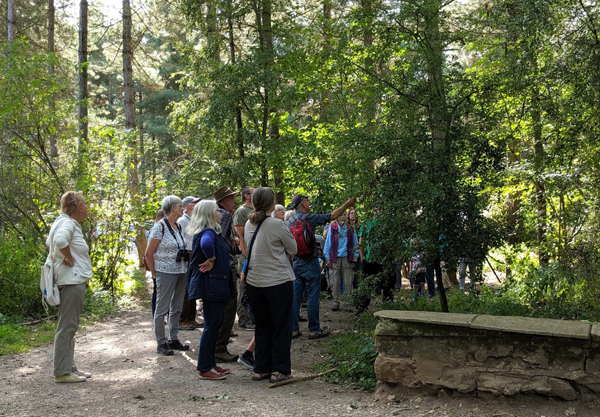 people looking at woodland fruit